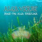 alga_verde_logo